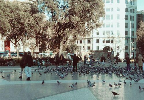 foto_plaza-catalunya